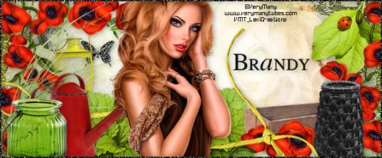 VM_LadybugGarden_Brandy2